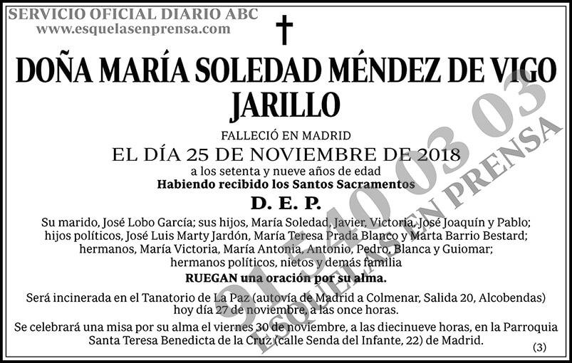 María Soledad Méndez de Vigo Jarillo